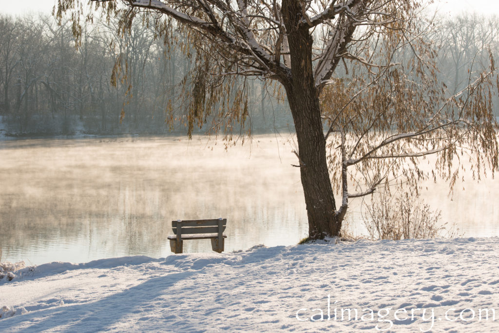 """The Bench by the Tree on the Lake"" christian lautenschleger"