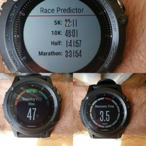 vo2 loss So, this is what losing fitness looks like to Garmin.christian lautenschleger